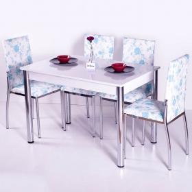 Favorite Mutfak 4 Sandalye Masa Takımı - Turkuaz Çiçek Desenli