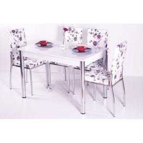 Masa Sandalye Takımı 4 Sandalye ve Masa - Favorite Turkuaz Mavi Çiçek Desenli