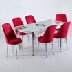Evform Tiviza 6 Kişilik Taytüyü Sandalye Açılır Mutfak Masa Takımı Kırmızı Çiçek